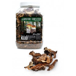 GARNITURE FORESTIERE 500G